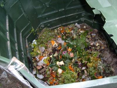Compostiere2
