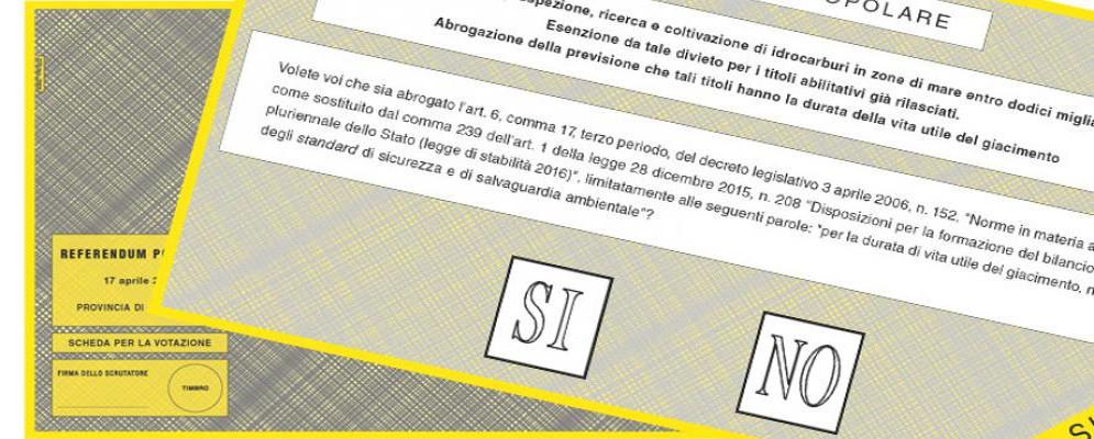 Referendum trivelle, ha votato il 26,69%: Cosenza affluenza più alta, Reggio maglia nera