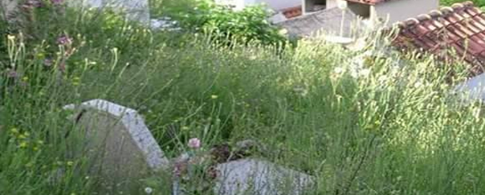 Lettera aperta di Nova al Sindaco Belcastro sulle condizioni dei cimiteri delle frazioni di Caulonia