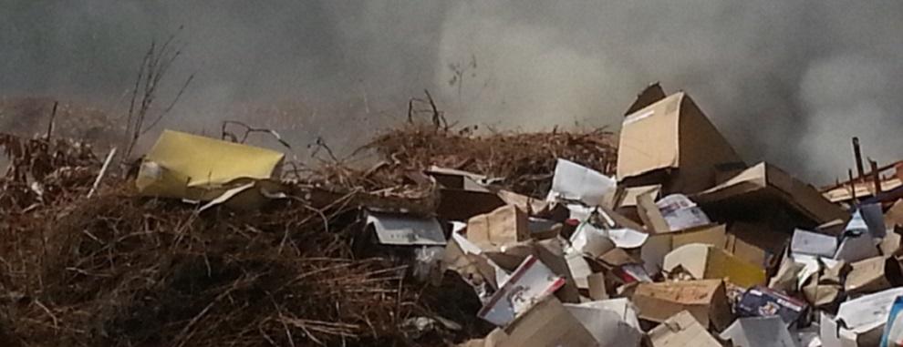 """Rifiuti in Calabria, Aiello: """"Siamo di fronte all'ennesimo scempio ambientale"""""""