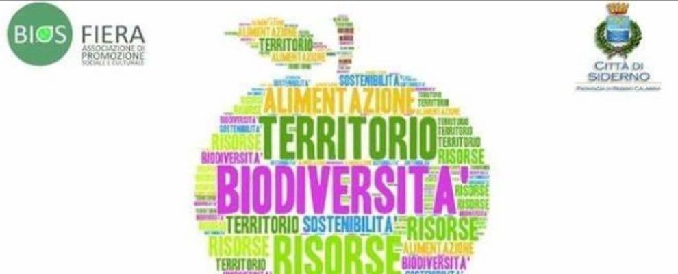 Siderno: domani un convegno sulla biodiversità