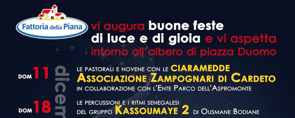 """Natale a Reggio Calabria, Fattoria della Piana: """"Da domani un ricco calendario a Piazza Duomo"""""""