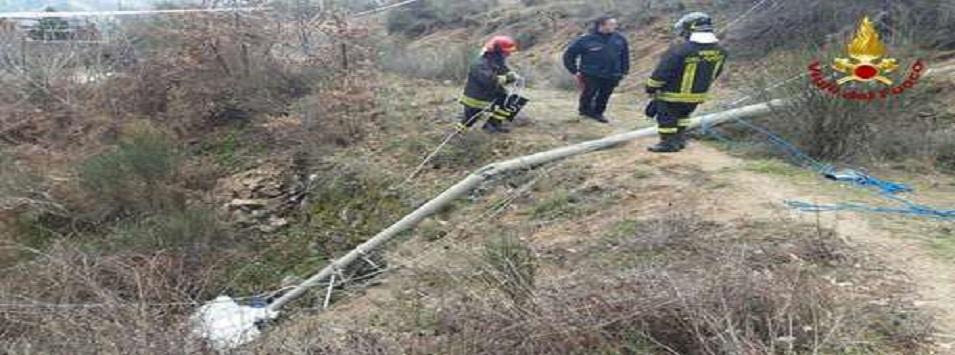 Calabria, Operaio muore travolto da un palo