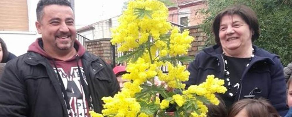 """Caulonia, Istituto """"Falcone – Borsellino"""": Celebrato l' 8 Marzo con un albero di mimosa"""