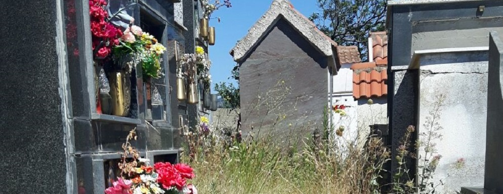Lettore segnala le condizioni pietose del cimitero di Ursini