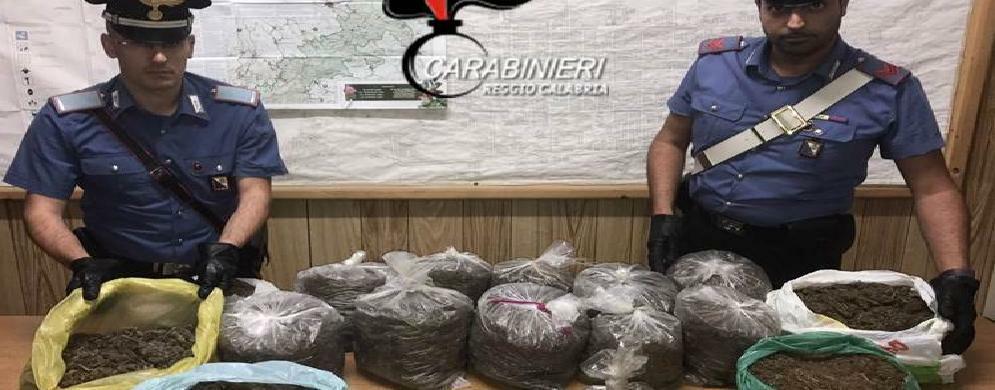 Rinvenuti 15 chili di cannabis indica a  Oppido Mamertina