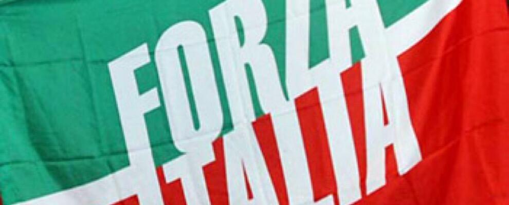 Elezioni: fuori il calabrese Alessandro Nicolò, contrari i rappresentanti di Forza Italia dell'Alto Ionio