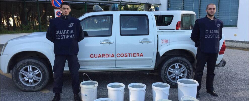 Roccella Jonica, l'operato della guardia costiera degli ultimi 3 mesi. I dettagli