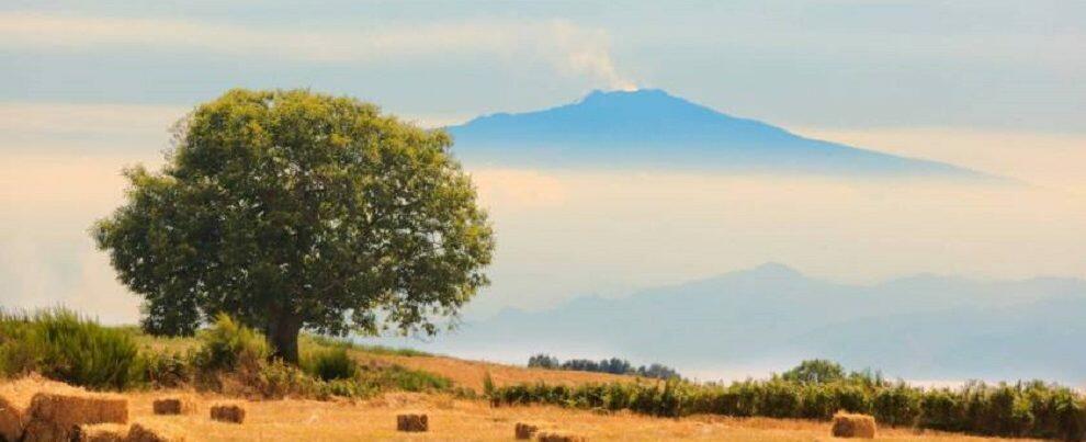"""""""Cammini di Calabria"""": trekking e passeggiate tra la Sila, il mare e i pendii dell'Aspromonte"""