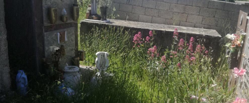 Lo stato indecoroso del cimitero di Ursini
