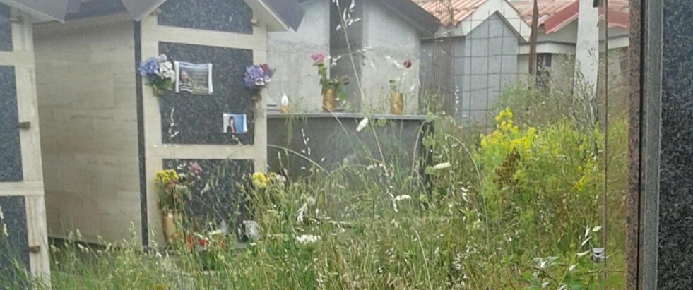 Segnalazione da Ursini sul profondo stato di abbandono del cimitero