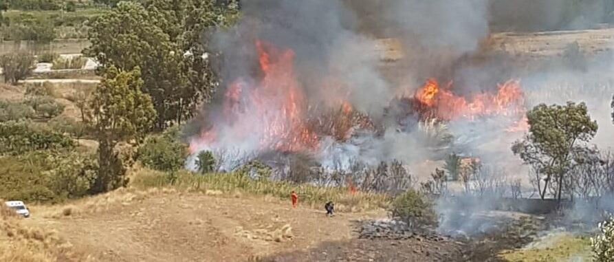 Inferno di fuoco a Caulonia. Fiamme alte 15 metri