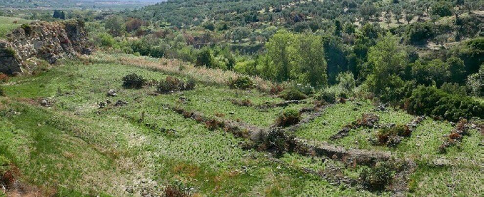 Scoperto un antico insediamento in Calabria, forse parte del Vivarium di Cassiodoro