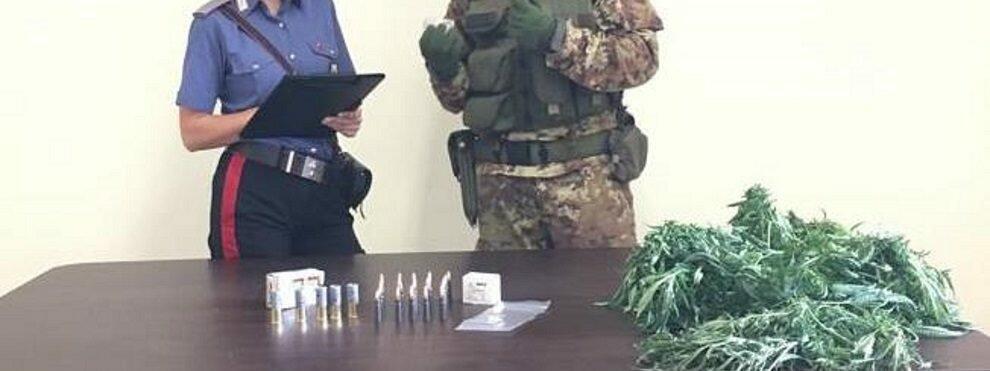 Arrestato dai Carabinieri per coltivazione di marijuana e detenzione di munizioni da guerra