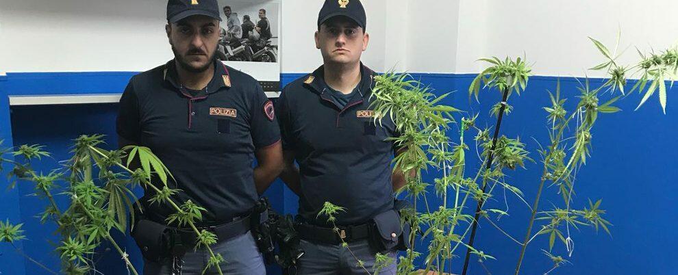 Lo arrestano per furto e a casa trovano anche droga