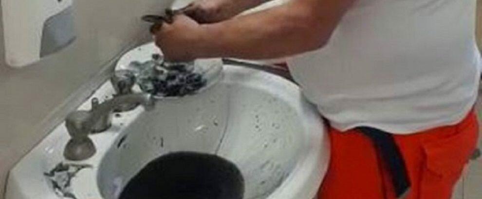 Licenziato medico che in Calabria puliva le seppie nel bagno dell'ospedale