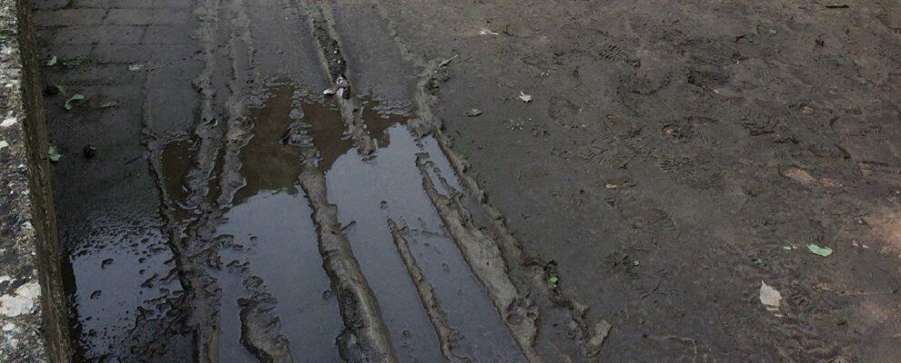Lettrice segnala le condizioni del cimitero di Caulonia superiore