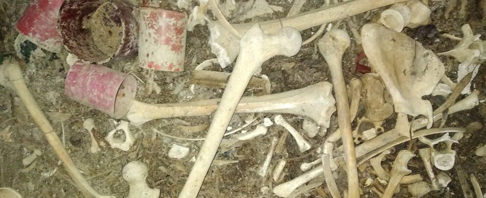Il cimitero di Focà tra incuria e abbandono – fotogallery
