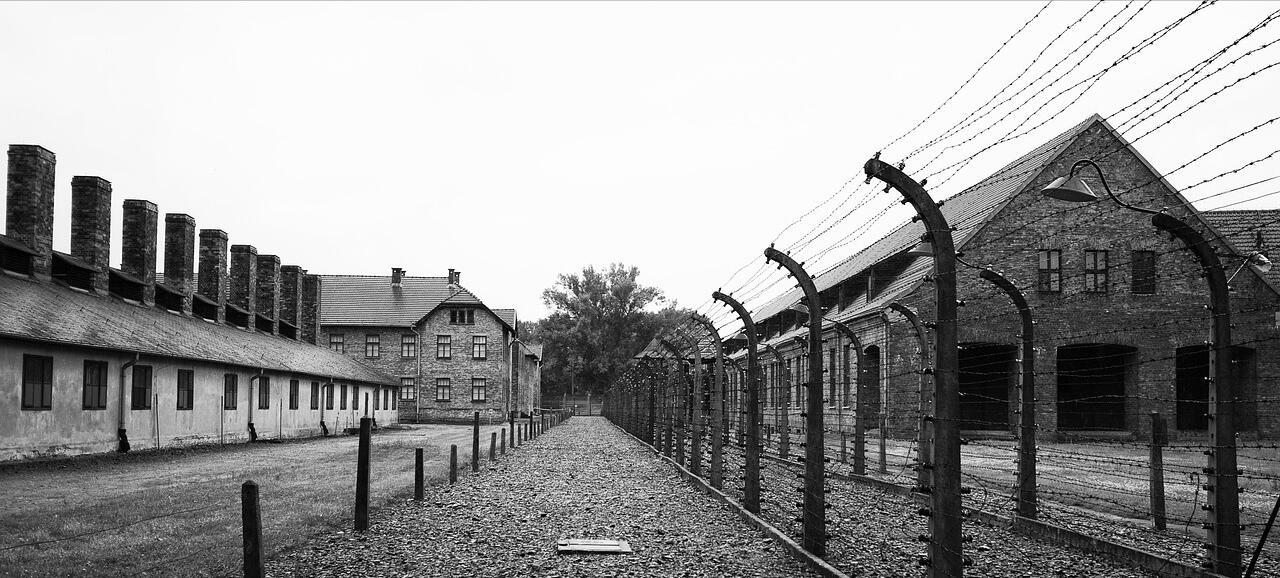 """Olocausto. Primaria Caulonia Marina, 5A: """"Raccontiamolo ai nostri figli"""""""