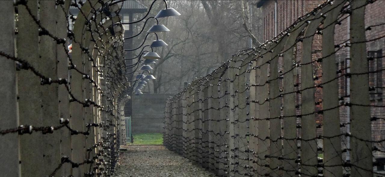 """Primaria Caulonia, 5B: """"Ogni bambino dovrebbe andare ad Auschwitz per conoscere la crudeltà dell'uomo"""""""