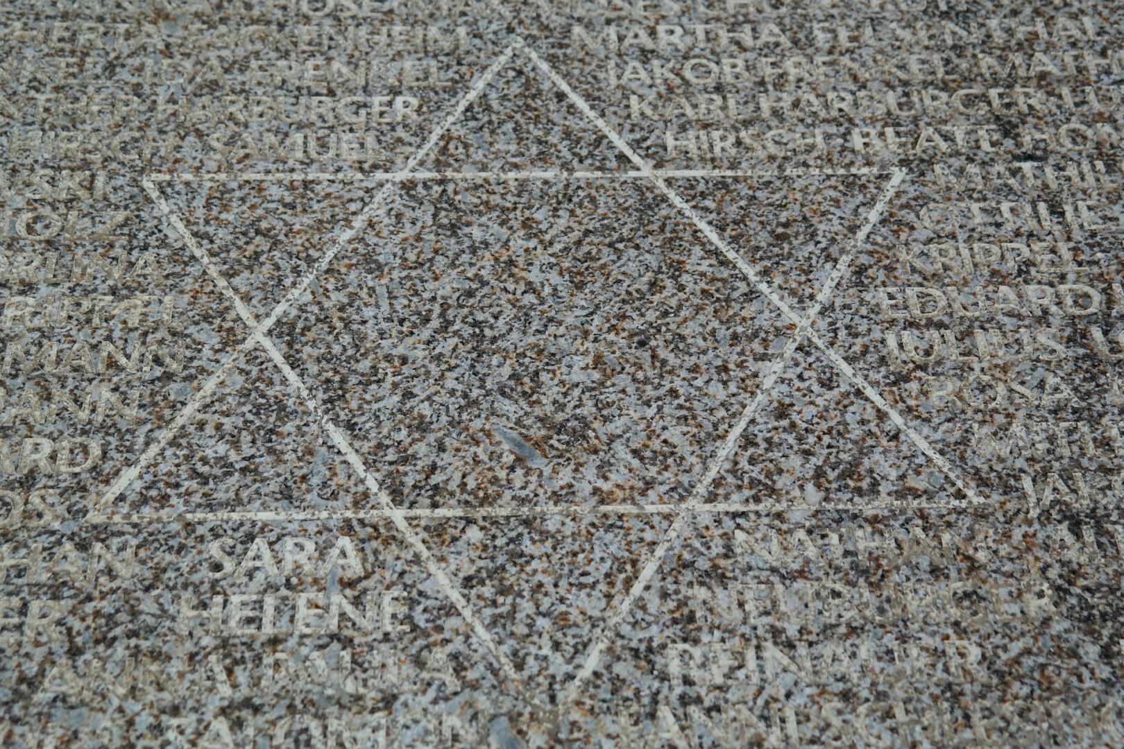 """Shoah, 5A Primaria Caulonia Marina: """"Noi non vogliamo dimenticare"""""""