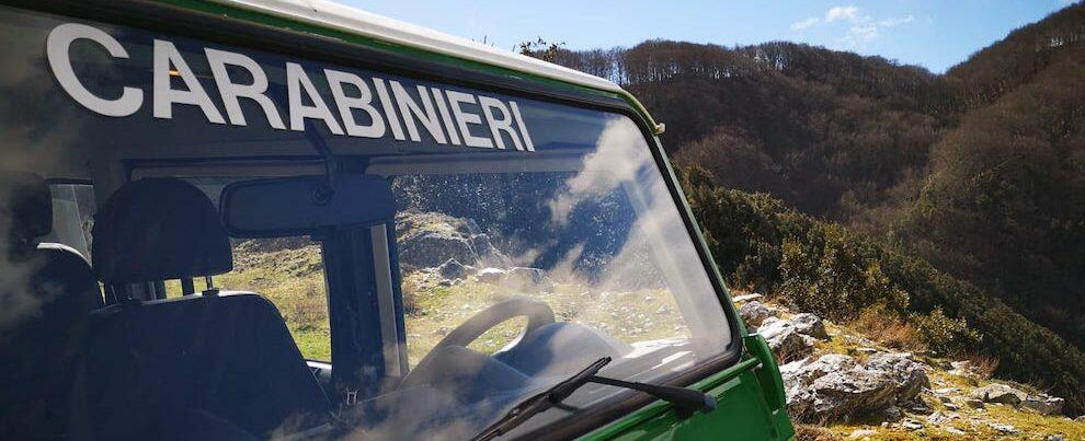 Controlli dei Carabinieri forestali nel Parco Nazionale d'Aspromonte: due denunce