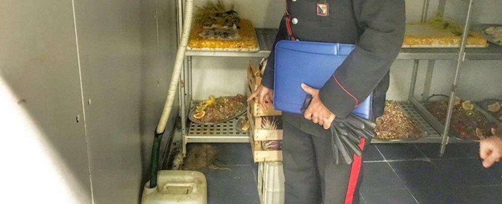 Festa della donna: prodotti scaduti e pietanze tra escrementi di gatti e topi, denunciato il titolare di un ristorante