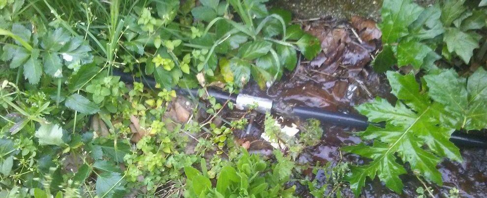 Nova scrive a Belcastro denunciando lo spreco di acqua pubblica