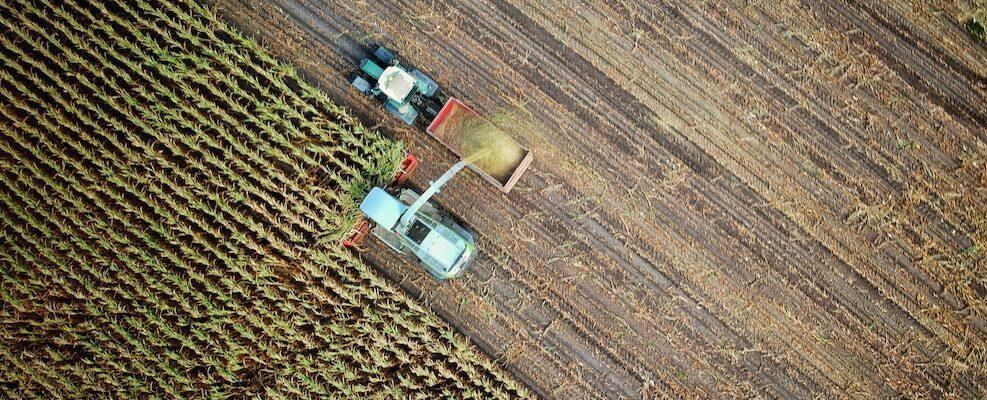 Dalla Regione Calabria 3 milioni di euro per cooperazione e ricerca in agricoltura