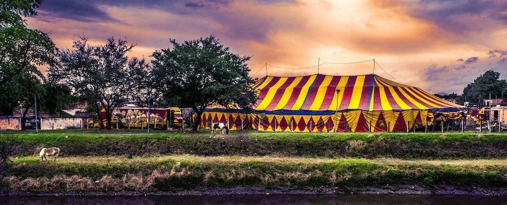 Grave incidente al circo Togni a Gioiosa Ionica