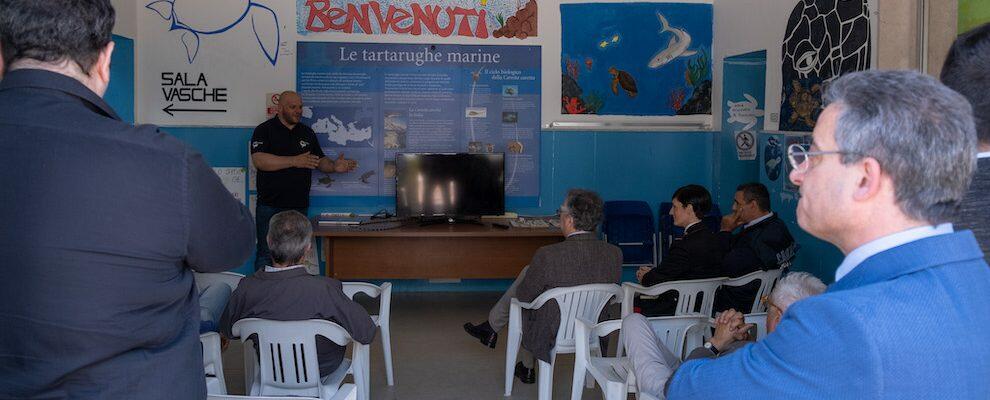 Riapre ufficialmente il Centro Recupero Tartarughe Marine di Brancaleone