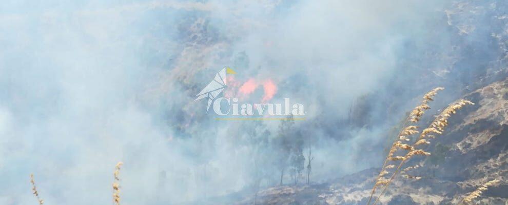 Caulonia, il vento rende difficile spegnere l'incendio