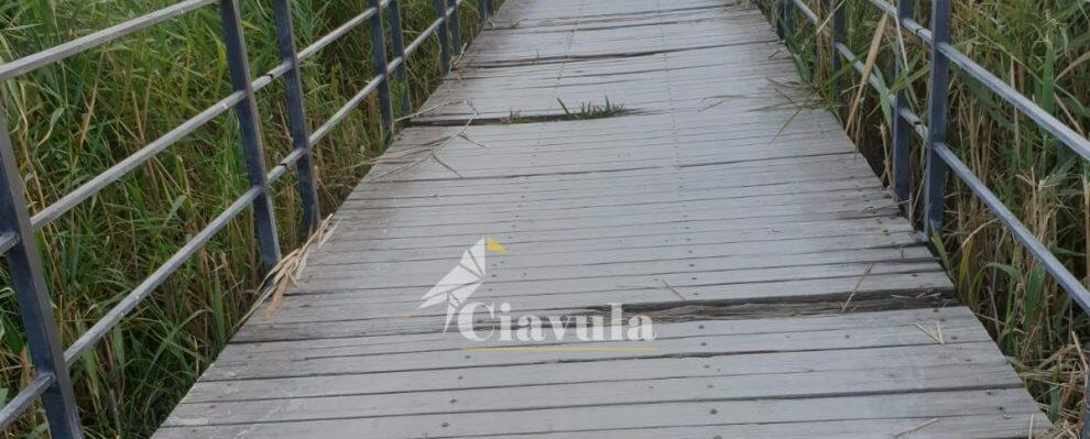 Pericoli nella pista ciclabile tra Caulonia e Roccella