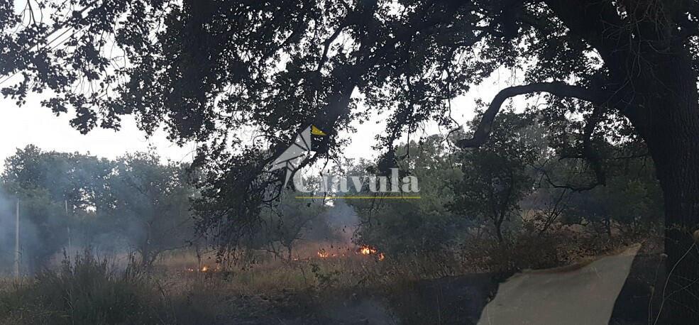 Incendio a Caulonia, ma la Protezione Civile non può intervenire perchè ha le casse vuote