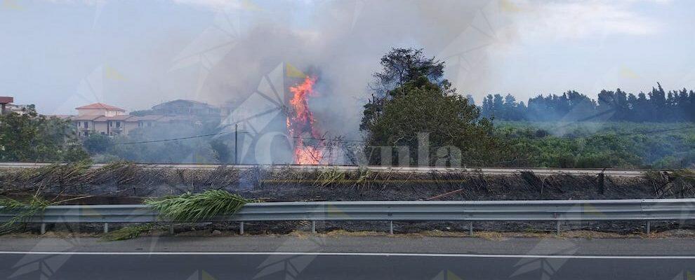 Il fuoco insidia il centro abitato di Caulonia marina