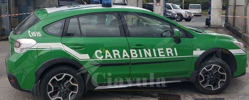 Autolavaggi scaricano nella rete fognaria comunale. Sequestrati 8 impianti in provincia di Reggio
