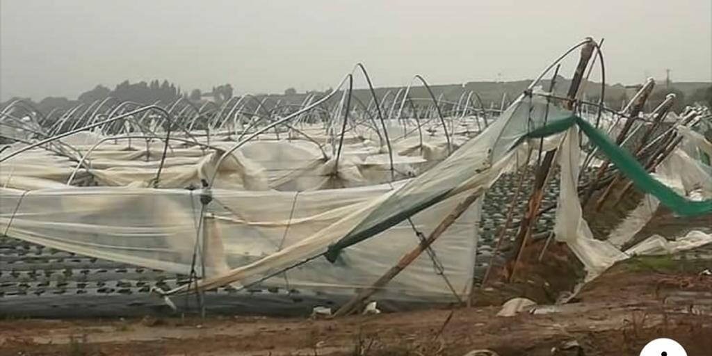 Tromba d'aria in Calabria: distrutti 6 ettari di serre