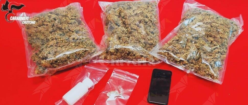 Calabria: sorpreso in auto con 750 grammi di marijuana, arrestato