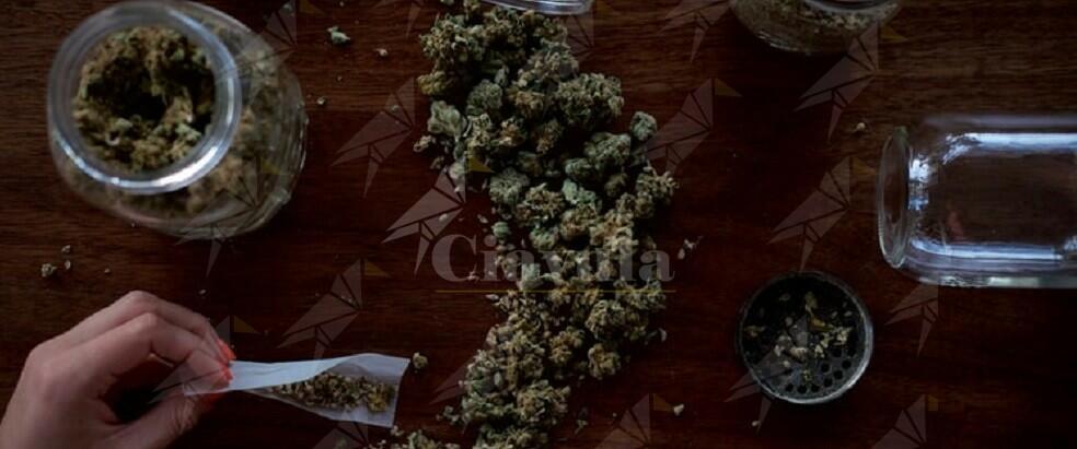 Trovato in casa con 7 Kg di sostanze stupefacenti, arrestato 60enne