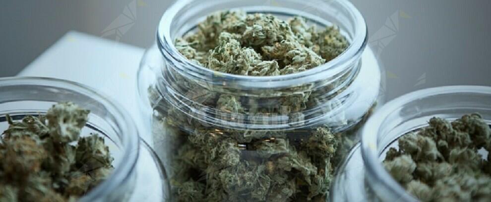 Deteneva in casa 550 grammi di marijuana, in manette un 34enne