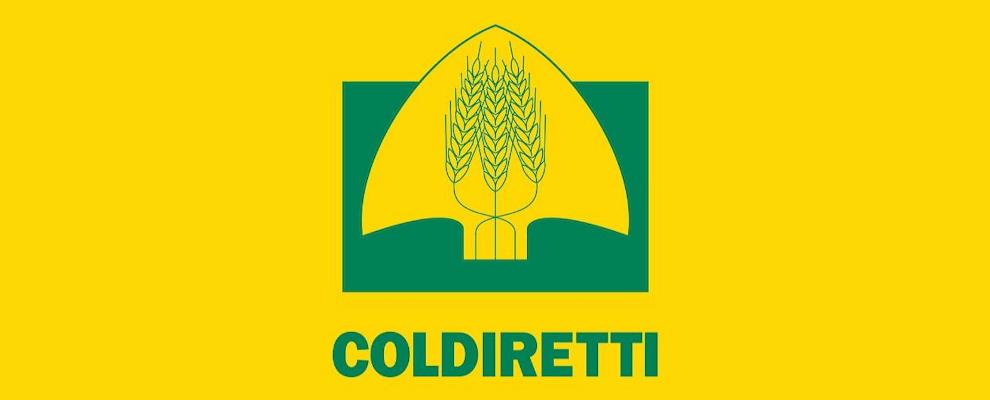 """Coldiretti: """"Non pagare le bollette emesse dal Consorzio di Bonifica ex Caulonia"""""""
