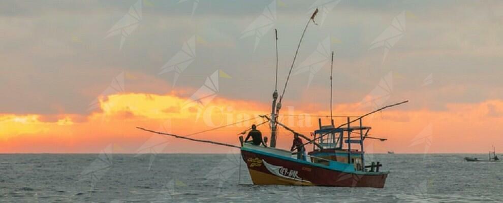 Stignano: sequestrati 186 kg di novellame di sarda. Multa di 10 mila euro ai pescatori