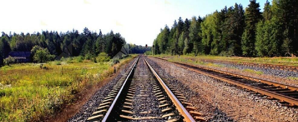 Muore sotto un treno a Badolato. Sembrerebbe suicidio