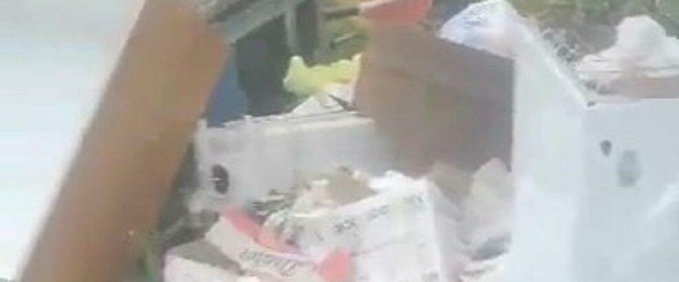 """Lettrice segnala: """"A Caulonia in via Vincilago vengono a gettare i rifiuti"""" – video"""