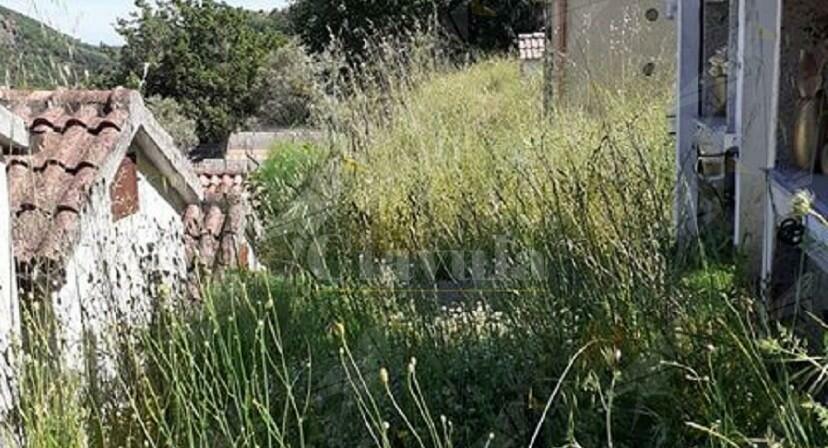 Segnalazione sullo stato di abbandono del cimitero di Crochi