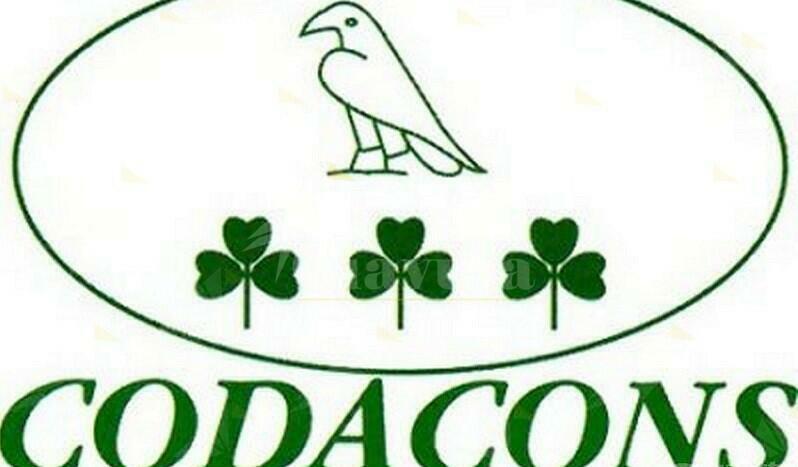 Calabria: parte in regione offensiva Codacons contro voucher