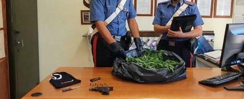 Beccato in auto con 14kg di marijuana dopo un rocambolesco inseguimento  sulla statale 106