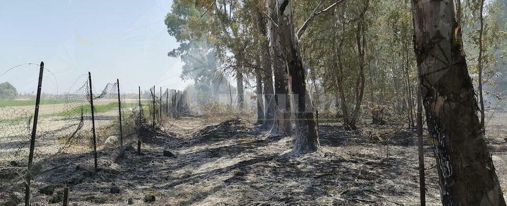 Incendio sul lungomare di Caulonia