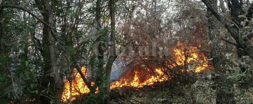 Ieri giornata di incendi a Placanica e Caulonia. Grande impegno della Protezione Civile