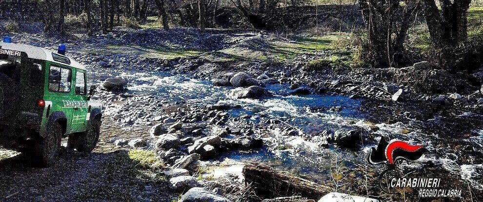Sorpresi a tagliare legna all'interno del Parco Nazionale d'Aspromonte: denunciate due persone di Bovalino